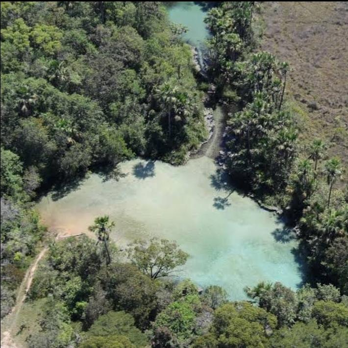 Novo Jardim Tocantins fonte: www.tocantinsagora.com.br